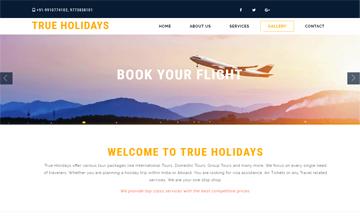 tour guide website